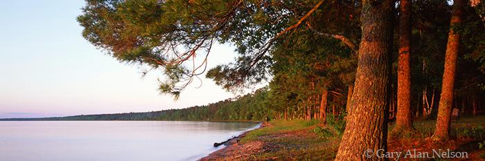 noway beach, cass lake, minnesota, white pine, chippewa national forest, photo