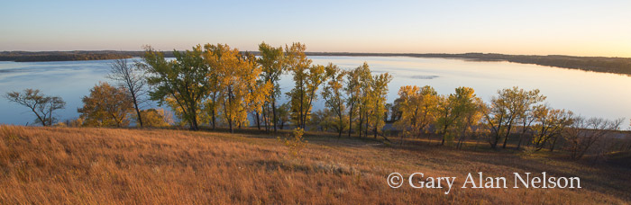 Prairie and trees on the shore of Lake Christina, Otter Tail County, Minnesota