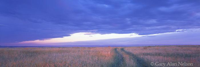 MT-95-2P-RU Low clouds and prairie grass in rural Bighorn County, Montana