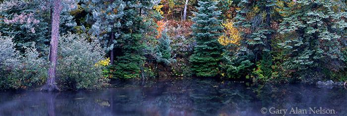 hoar frost, autumn, ontario, photo