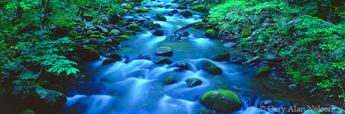 roaring fork river, great smoky mountains national park, tennessee, photo