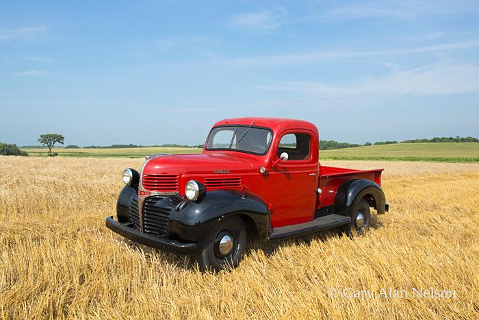 Dodge,vintage truck, dodge pickup, photo