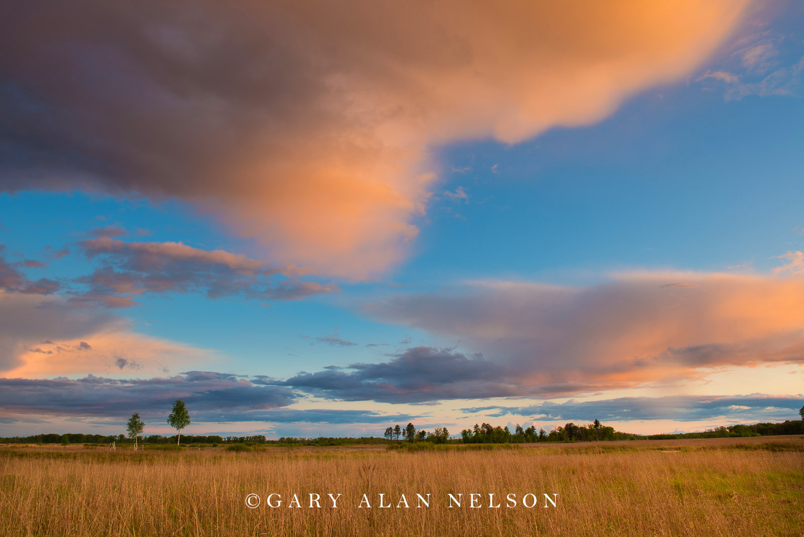 Prairie and clouds over Carlos Avery Wildlife Management  Area, Minnesota