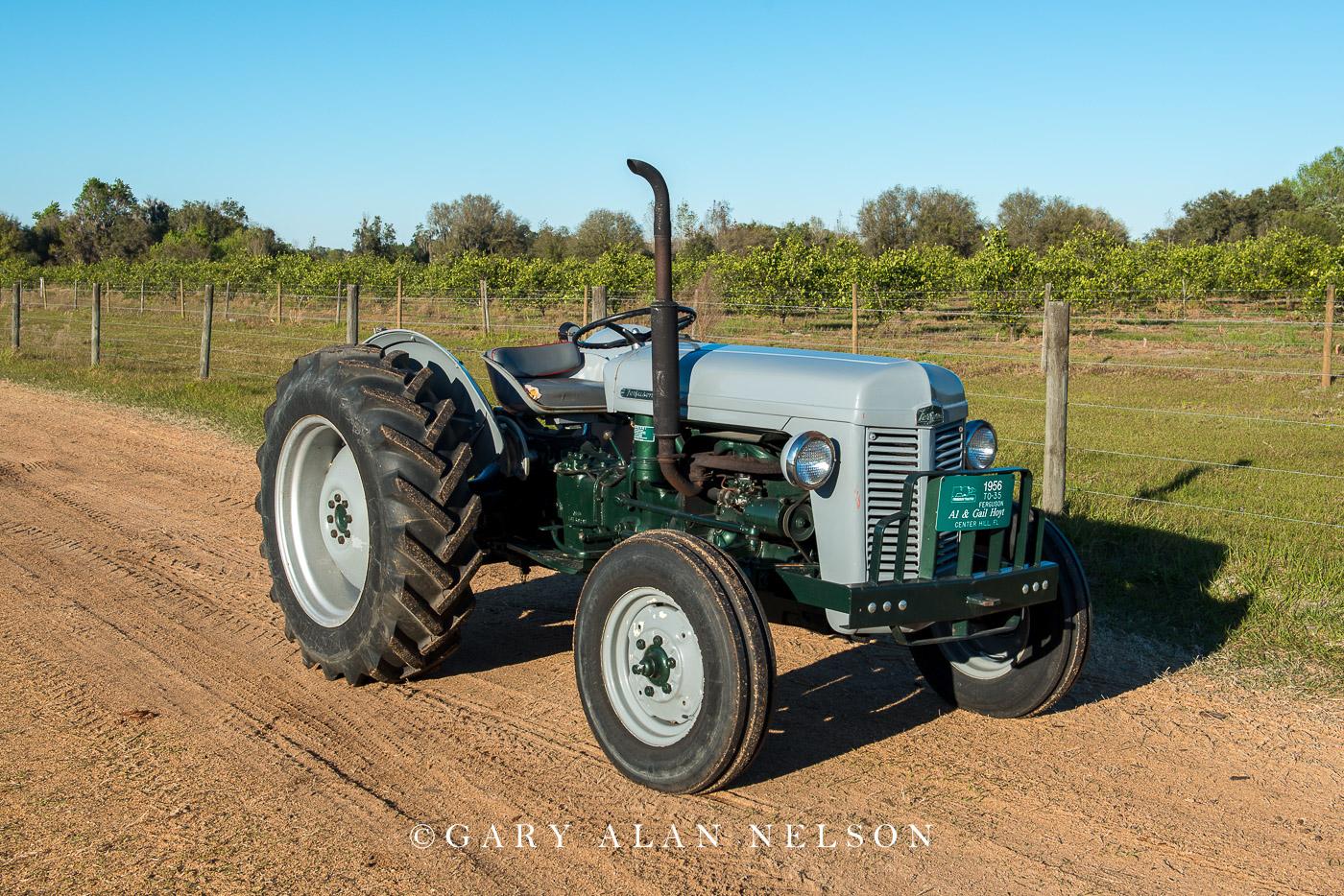 1956 Ferguson TO 35