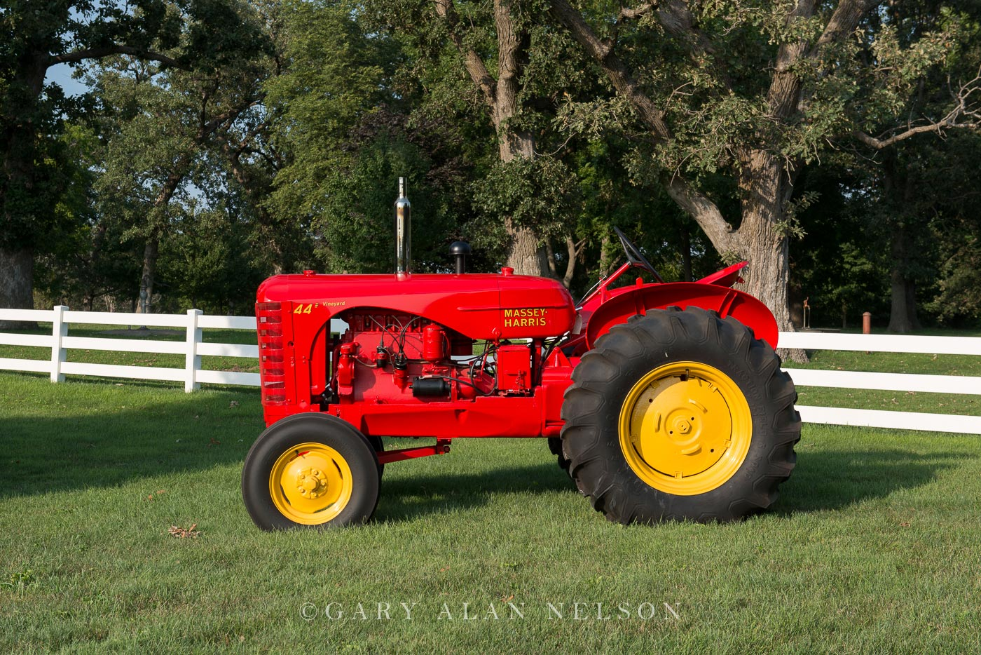 Massey-Harris, antique tractor, tractor, vintage tractor, photo