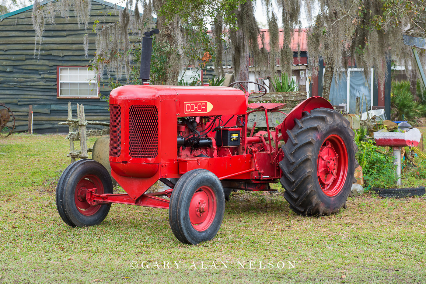 antique tractor, vintage tractor, Co-Op, photo