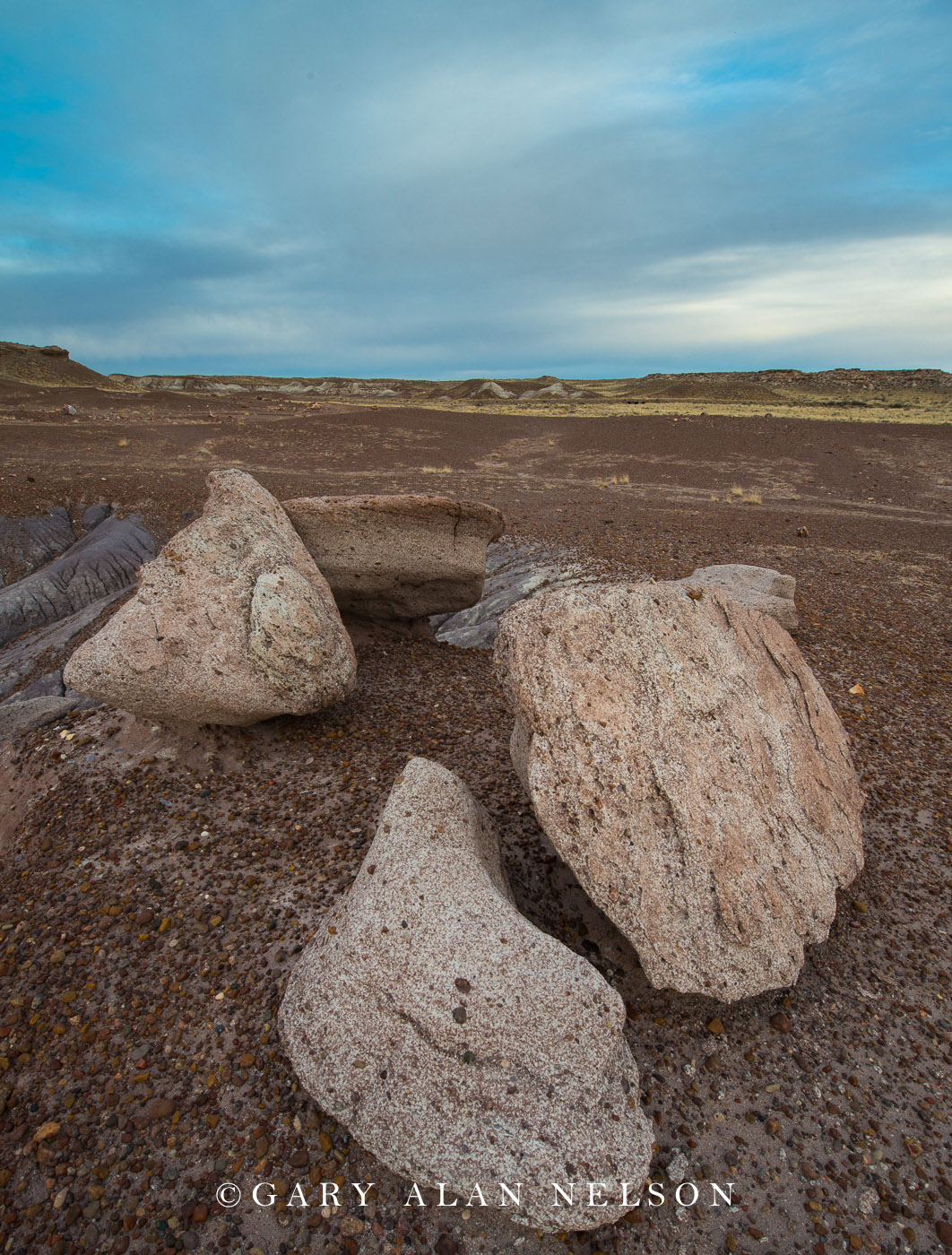 Petrified Forest National Park, national park, arizona, boulders, badlands, photo