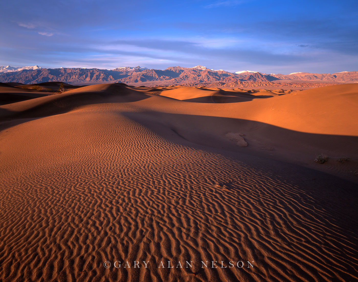 sand dunes and grapevine mountains