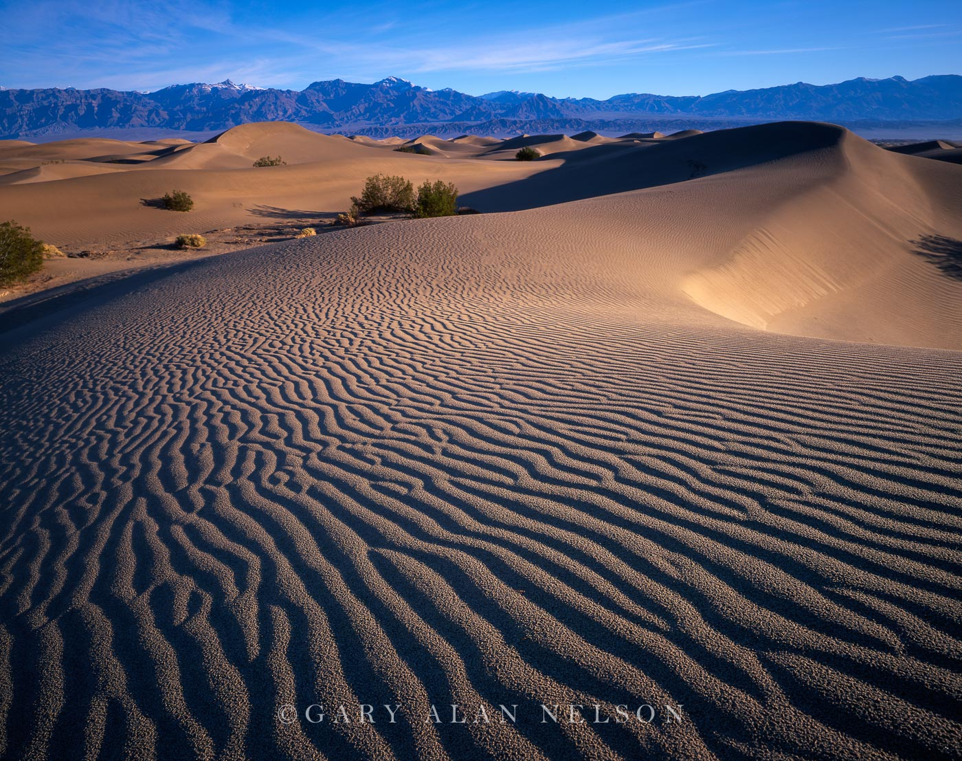 National Park,california,death valley, photo
