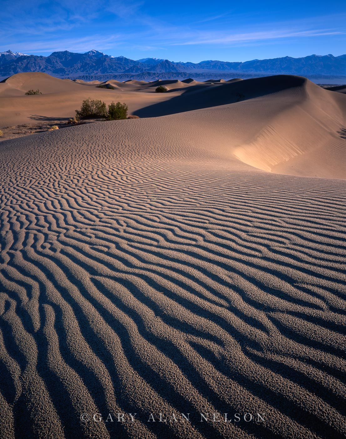 Death Valley, california, sand dunes, national park, photo
