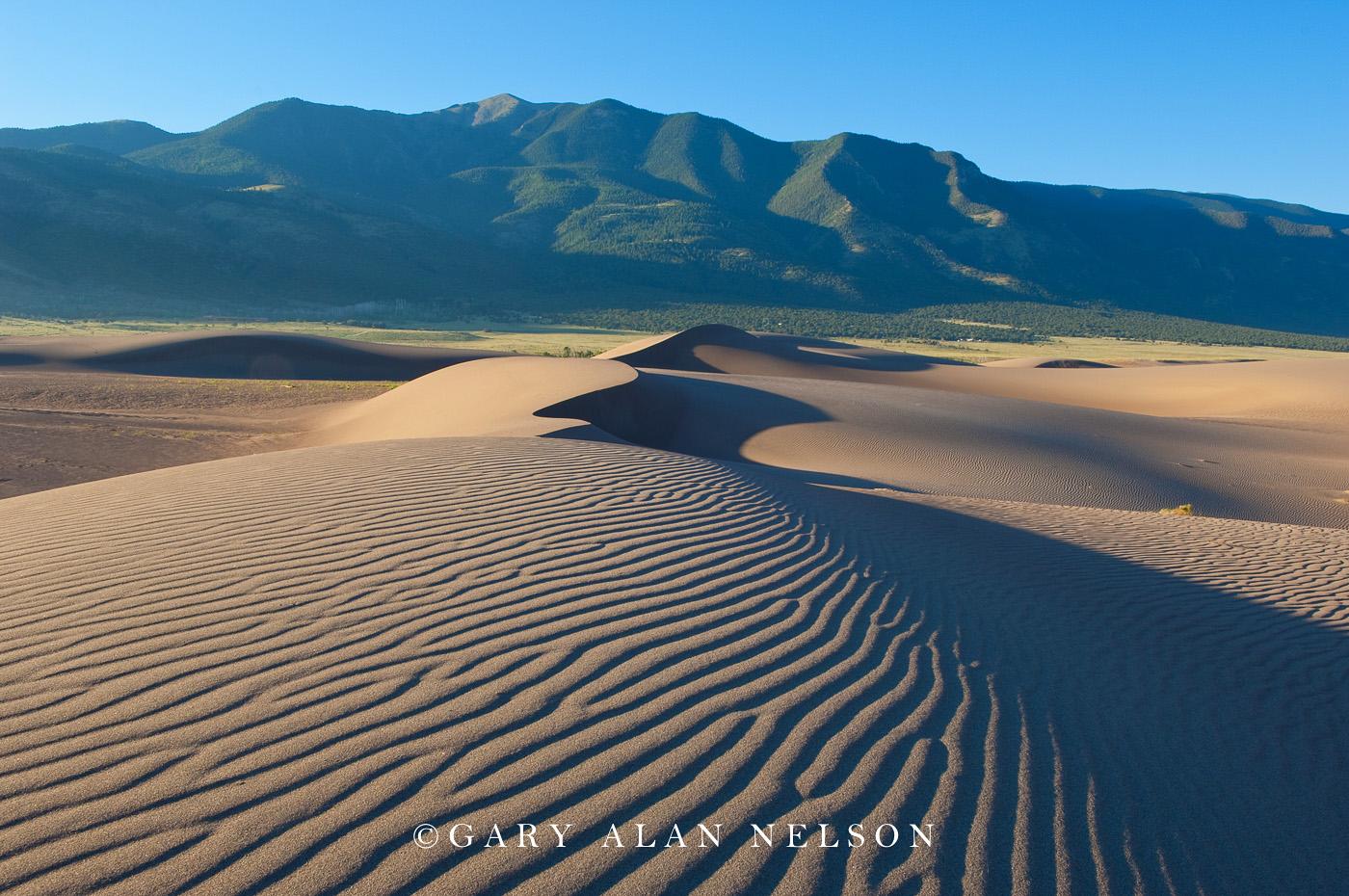 national park, great sand dunes, sand dunes, colorado, photo