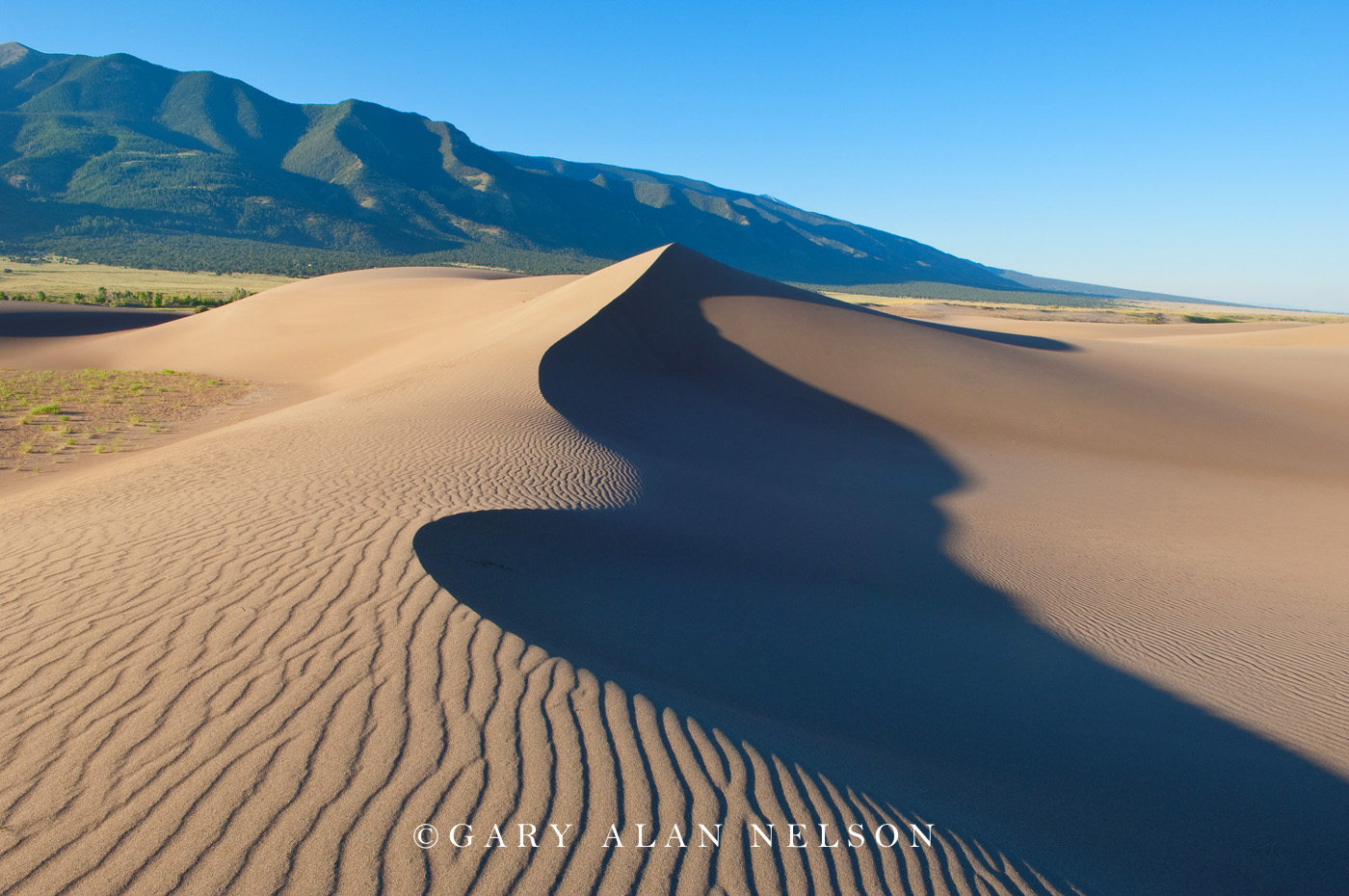 great sand dunes, sand dunes, national park, colorado, photo