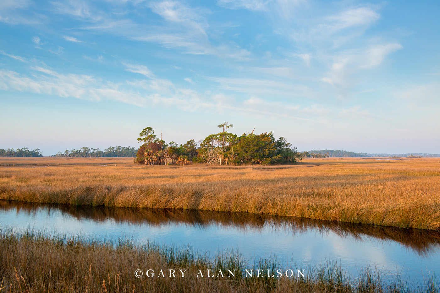 grasses, national wildlife refuge, freshwater marsh, florida, photo