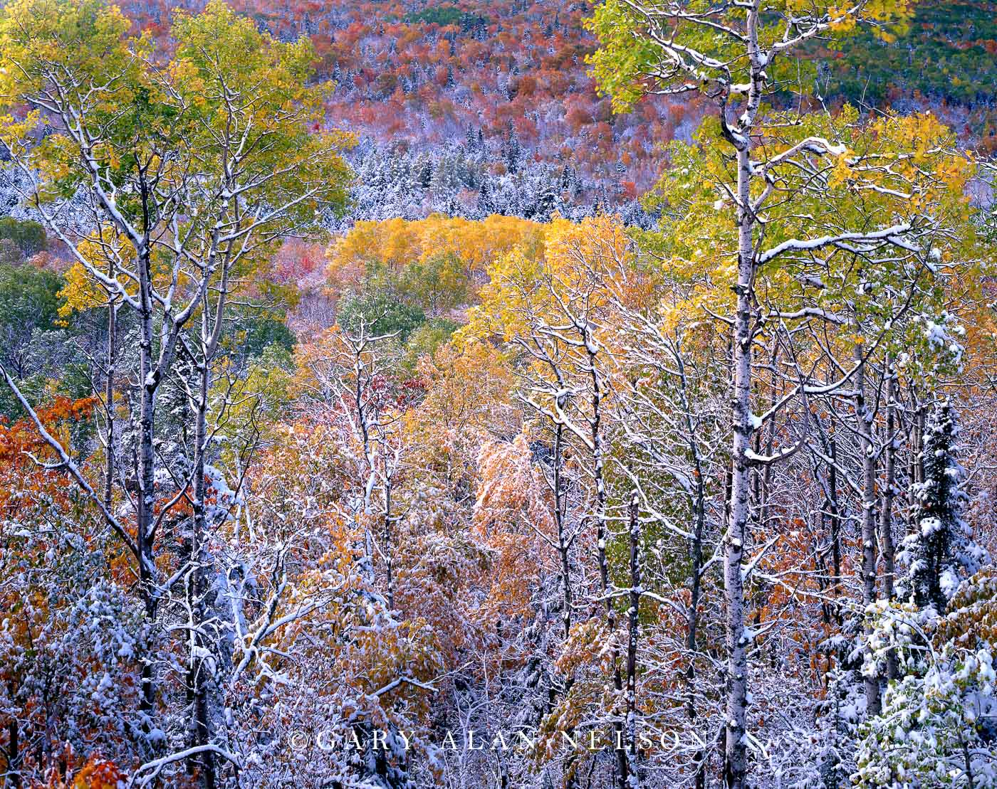 Copper State Forest, Keweenaw Peninsula, Michigan, snow, autumn, photo
