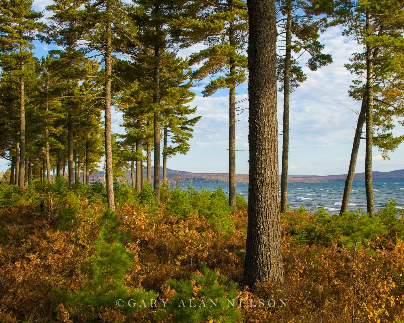 lake superior, great lakes, photo