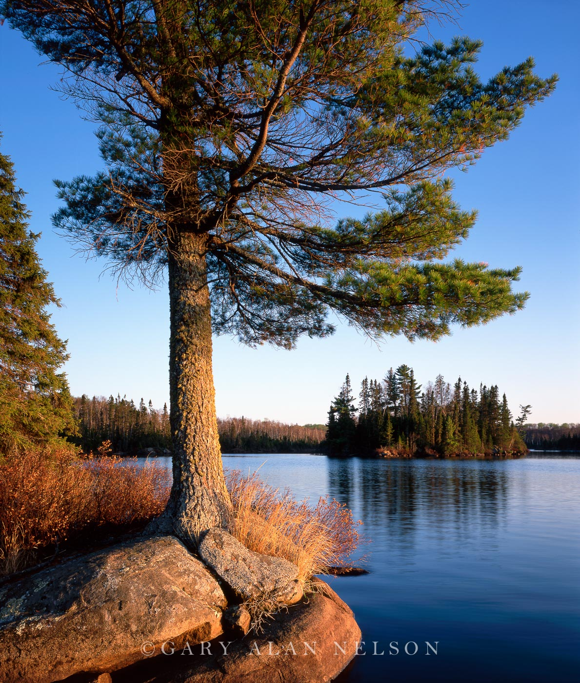 burnt lake, boundary waters canoe area wilderness, minnesota, photo