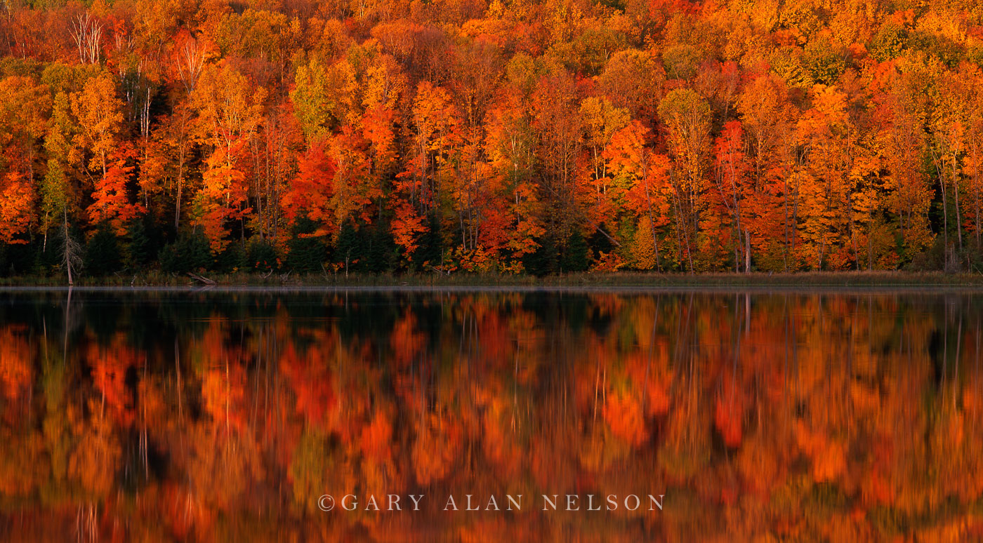 Wall of Color on Long Lake, Chippewa National Forest, Minnesota