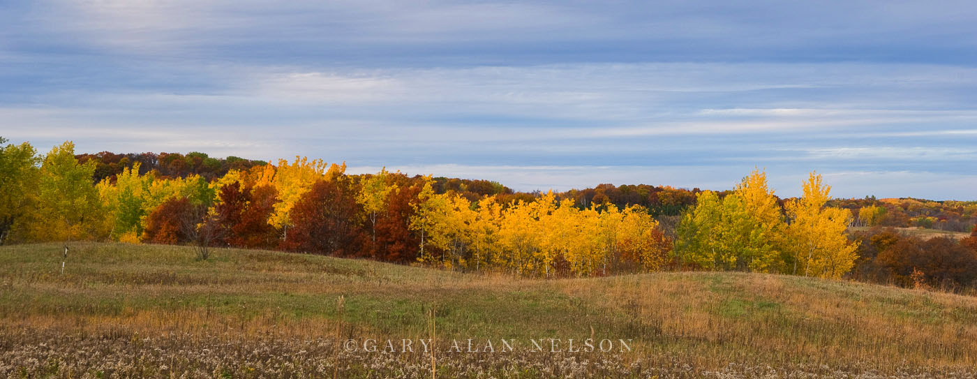 minnesota, prairie, state park, autumn, photo