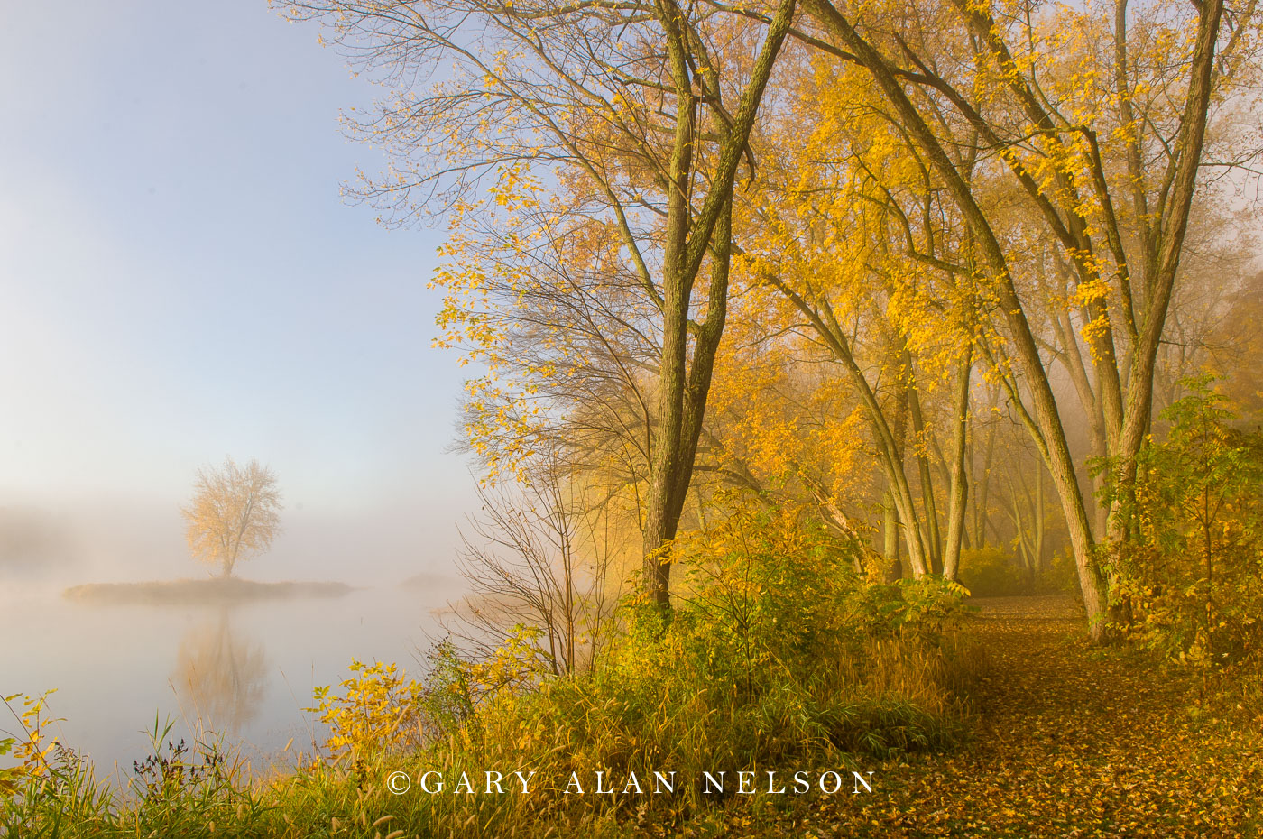 st. croix river, minnesota, wisconsin, national scenic river, fog, maple, photo