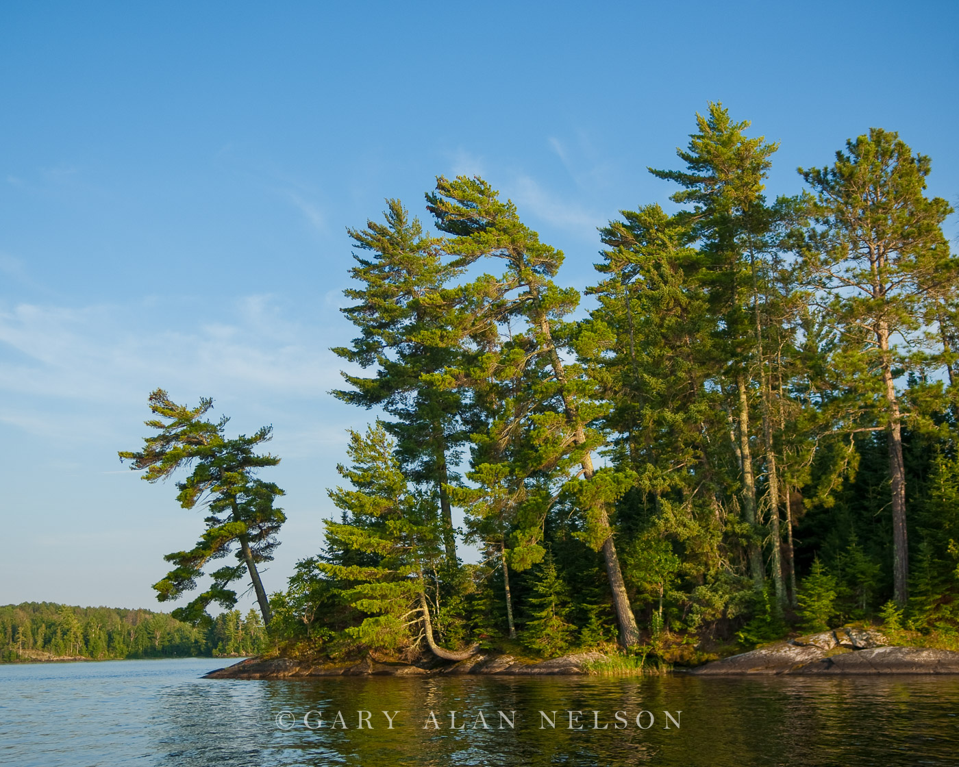 National Park,Voyageurs National Park,lake,minnesota,pines,voyageurs, photo