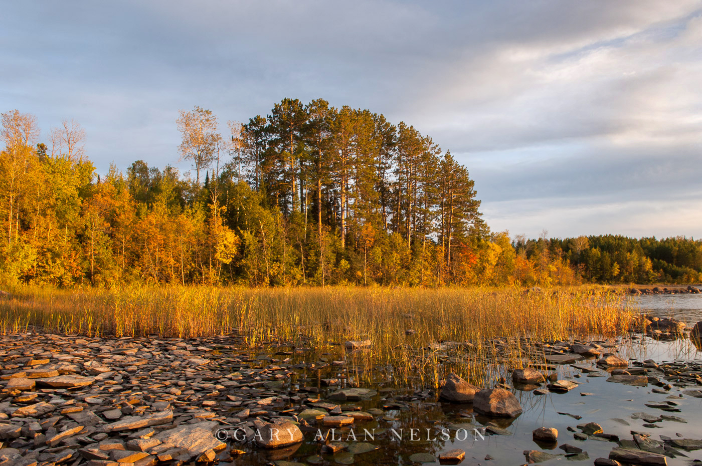 autumn,boundary waters canoe area,lake,minnesota, photo