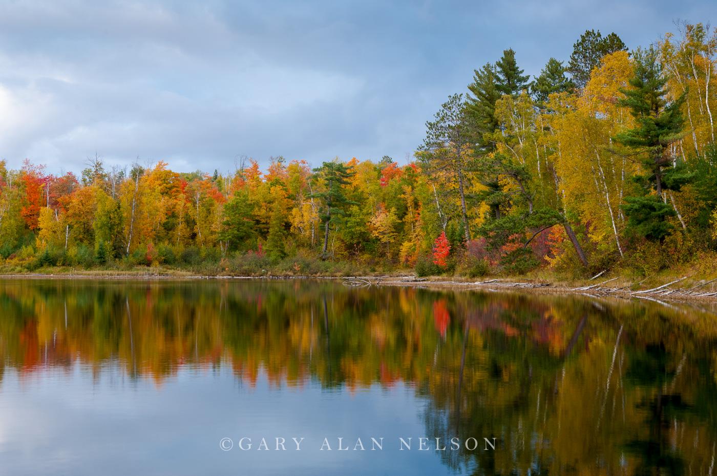minnesota, lake, national forest, chippewa national forest,, photo
