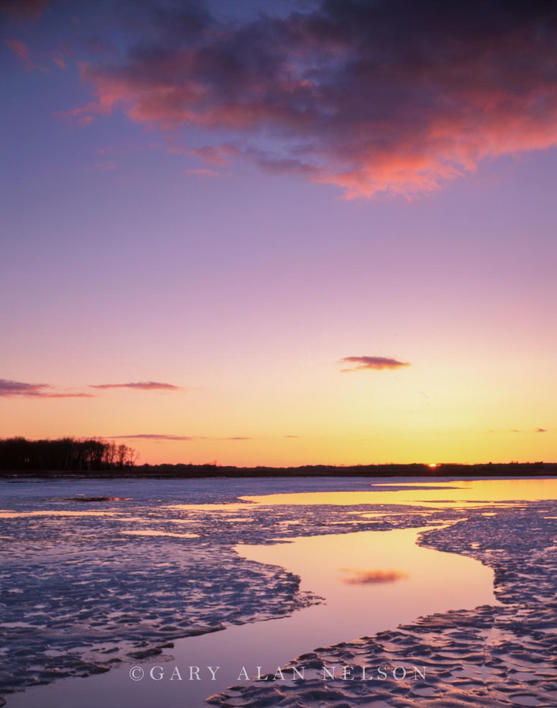 ice, dawn, photo
