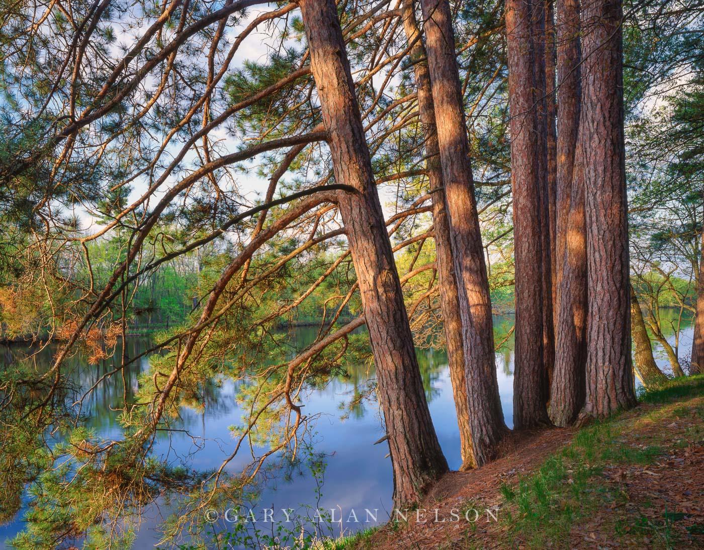 st. croix river, photo
