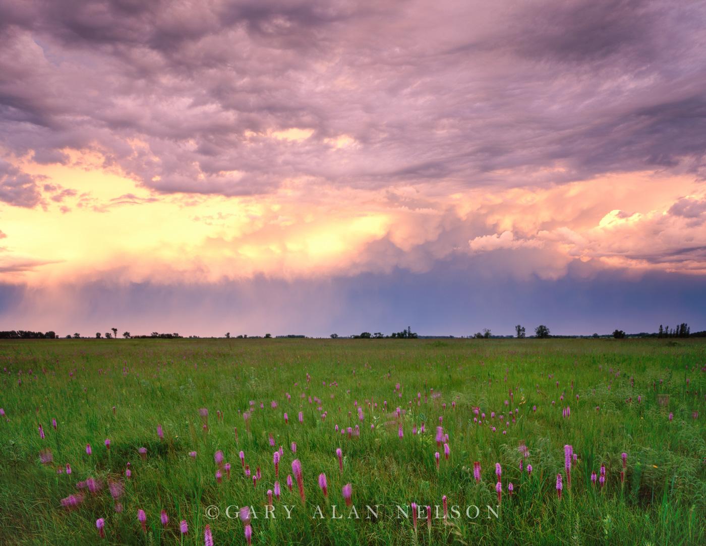 storm, , photo