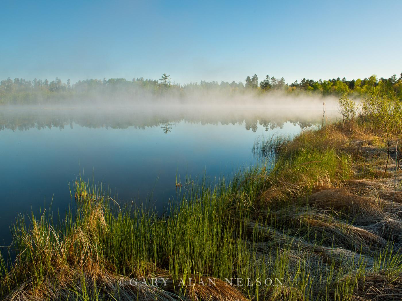 minnesota, fog, pond, photo