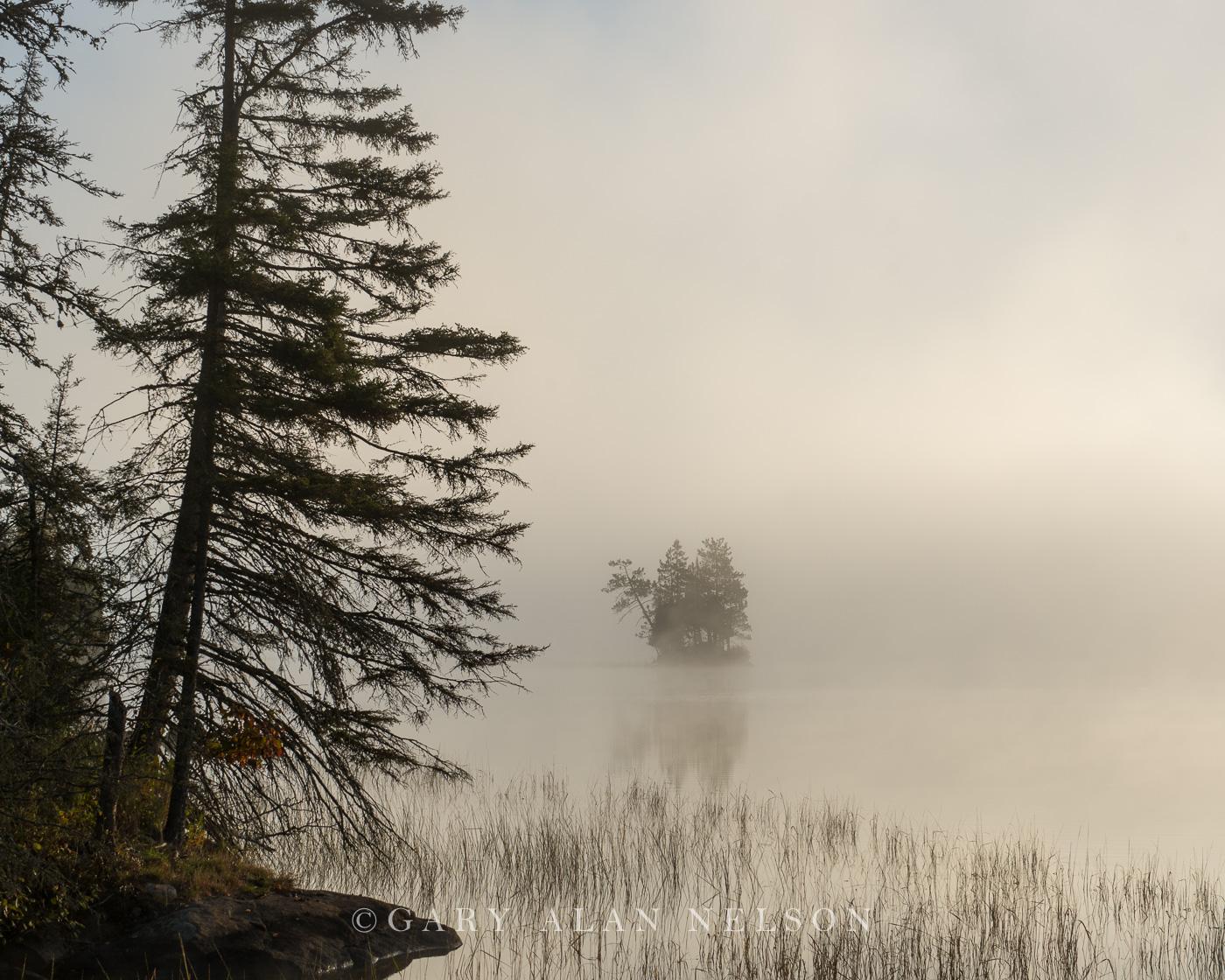 Island in fog, at dawn, Superior National Forest, Minnesota