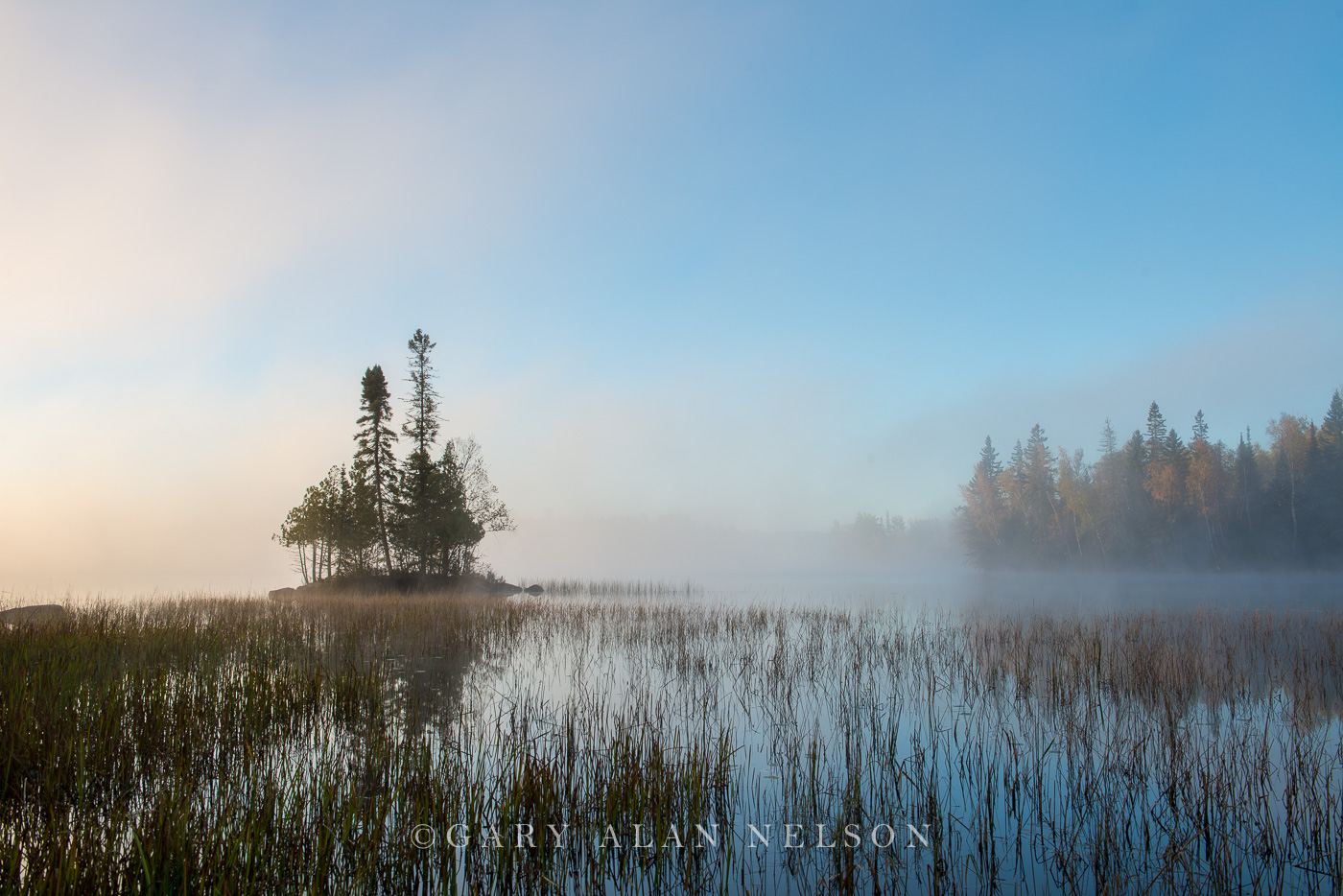Fog and rushes at dawn,  Superior National Forest, Minnesota