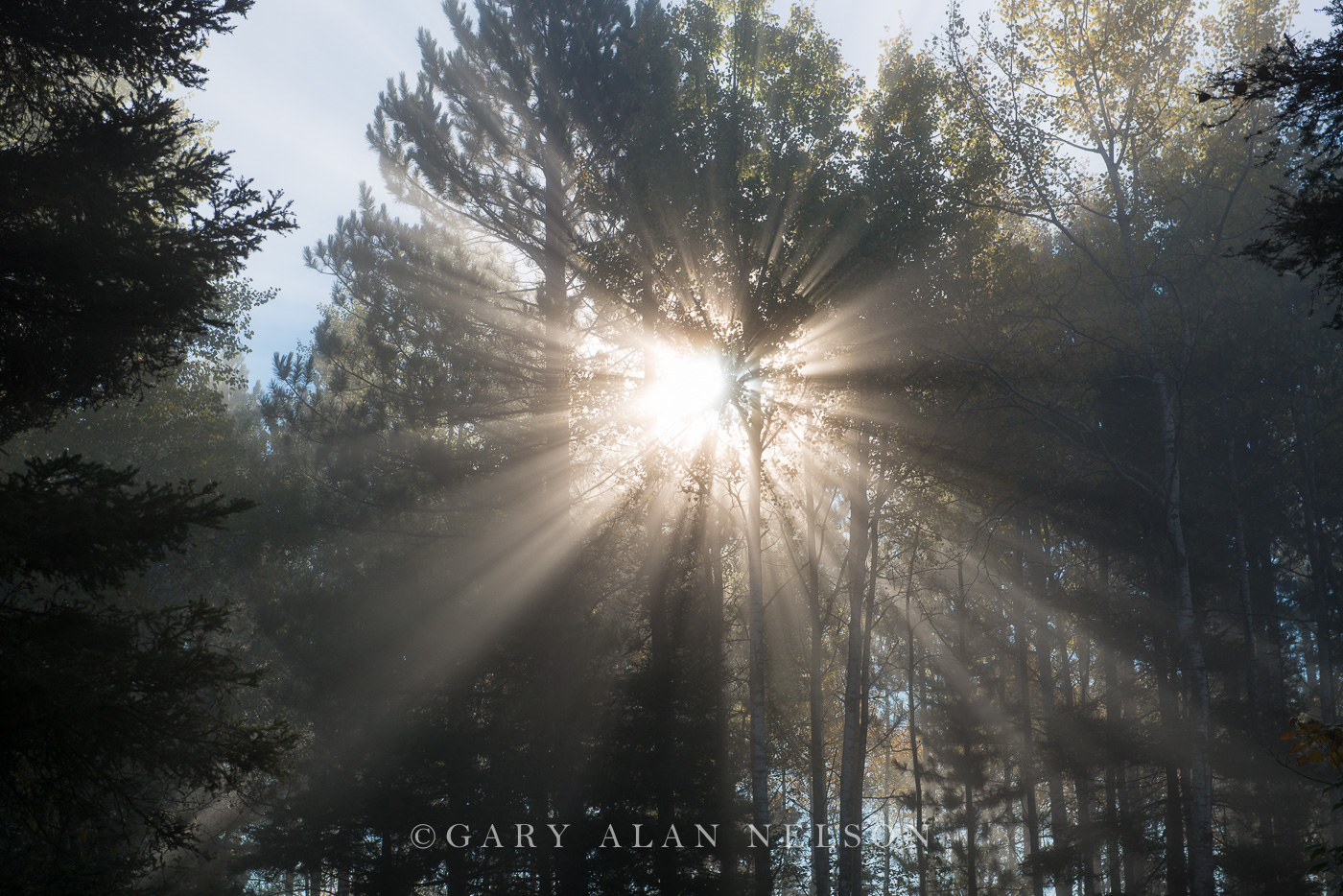 Superior National Forest,autumn,fog,sunrays, photo