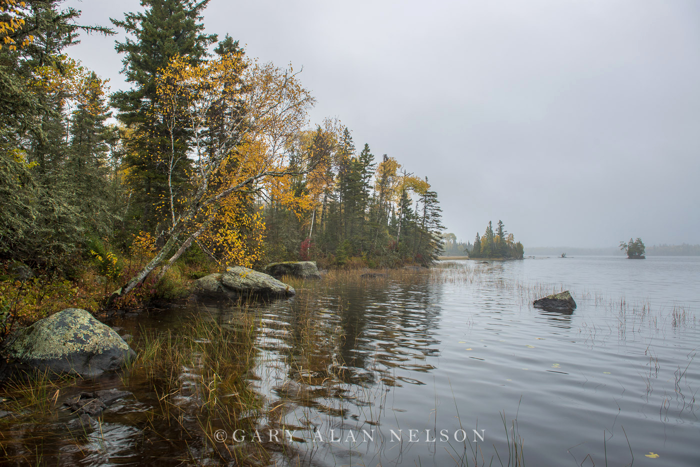 Superior National Forest,birch lake,boundary waters,canoe country,minnesota, photo
