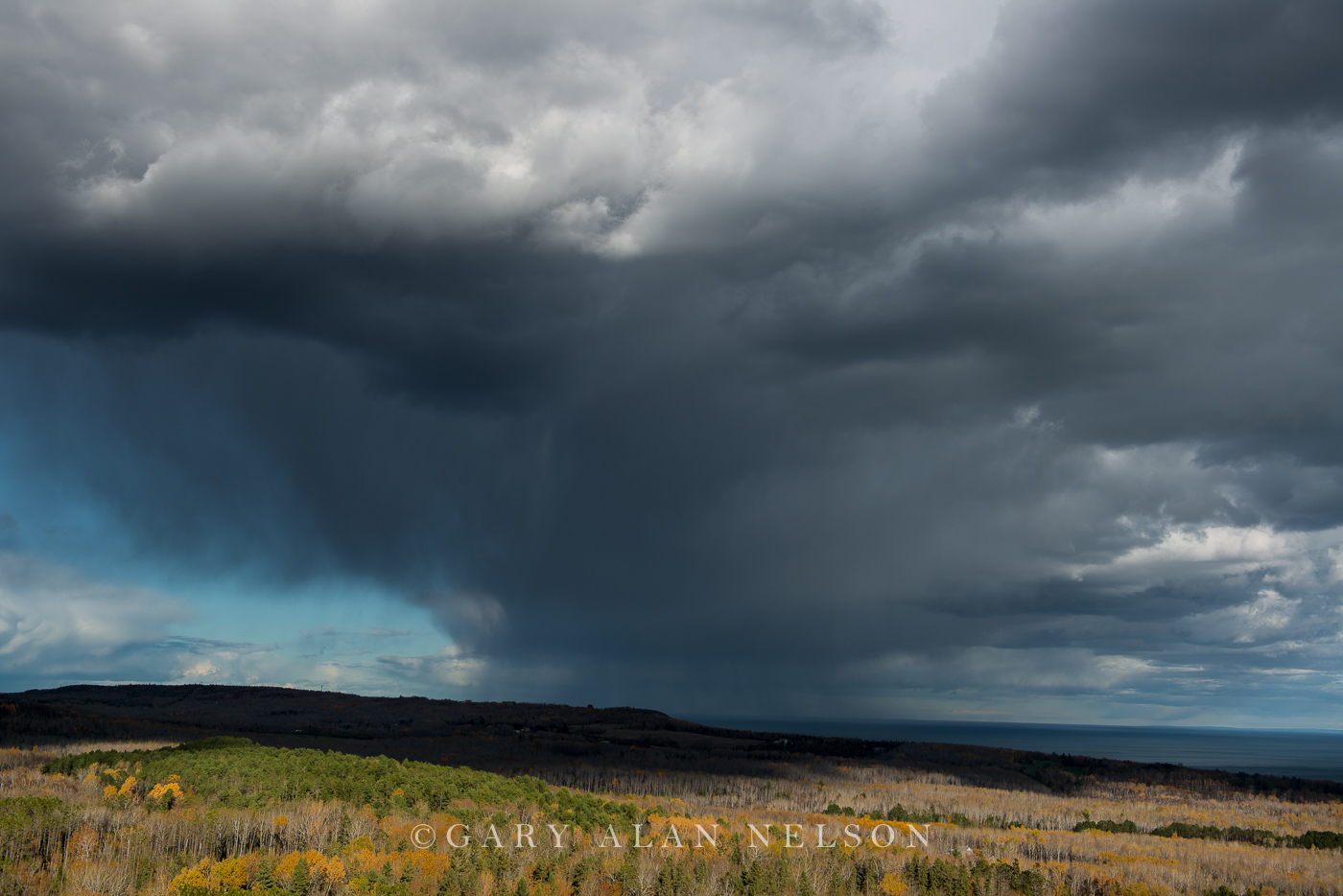 Aspens,Storm Clouds,Superior National Forest,autumn,clouds,lake superior,rain,storms, photo