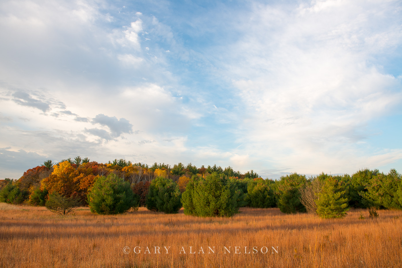 Carlos Avery,autumn,clouds,minnesota,prairie,prairie grass,wildlife management area, photo
