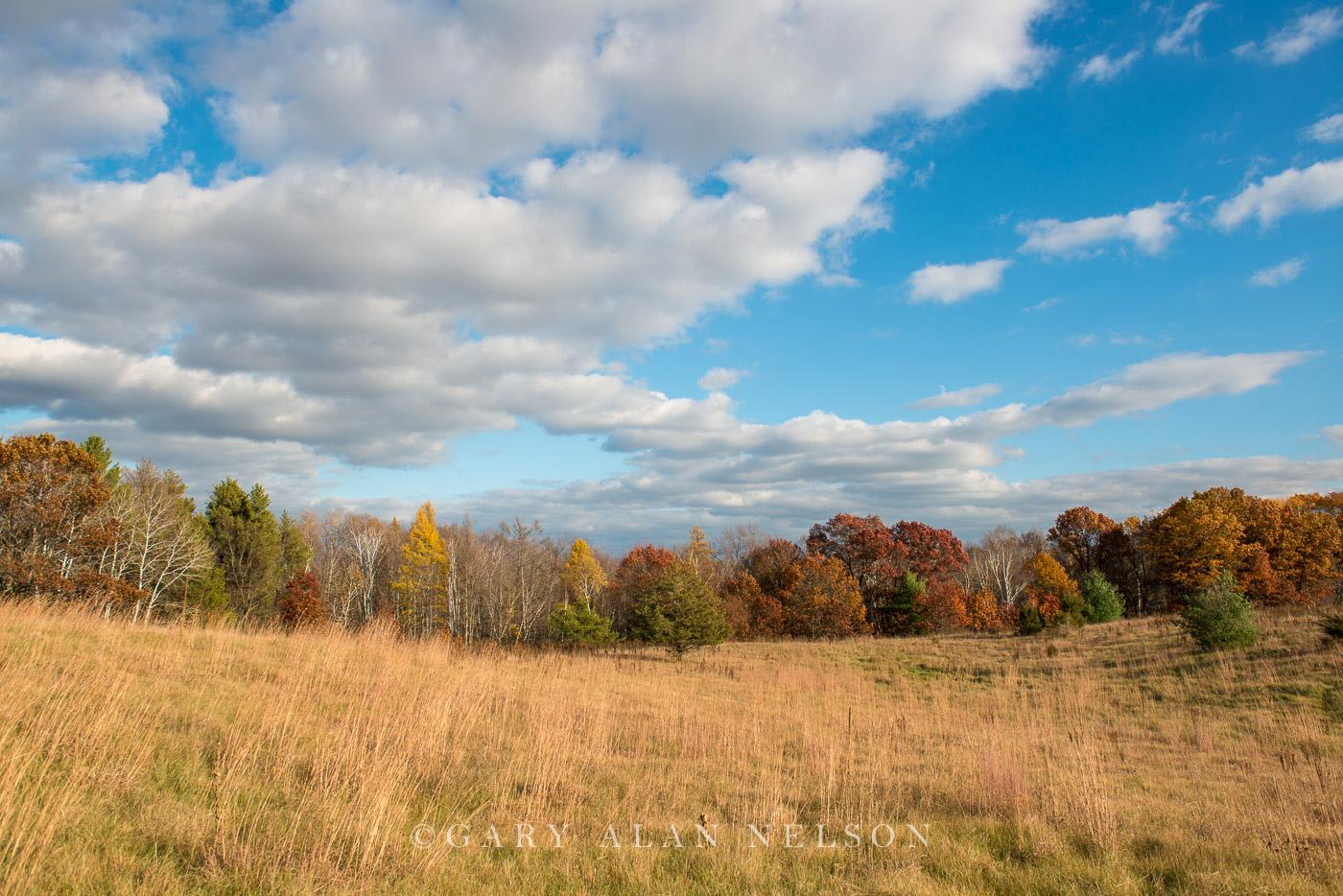 Carlos Avery,autumn,clouds,minnesota,prairie,prairie grass,wildlife management area, photo