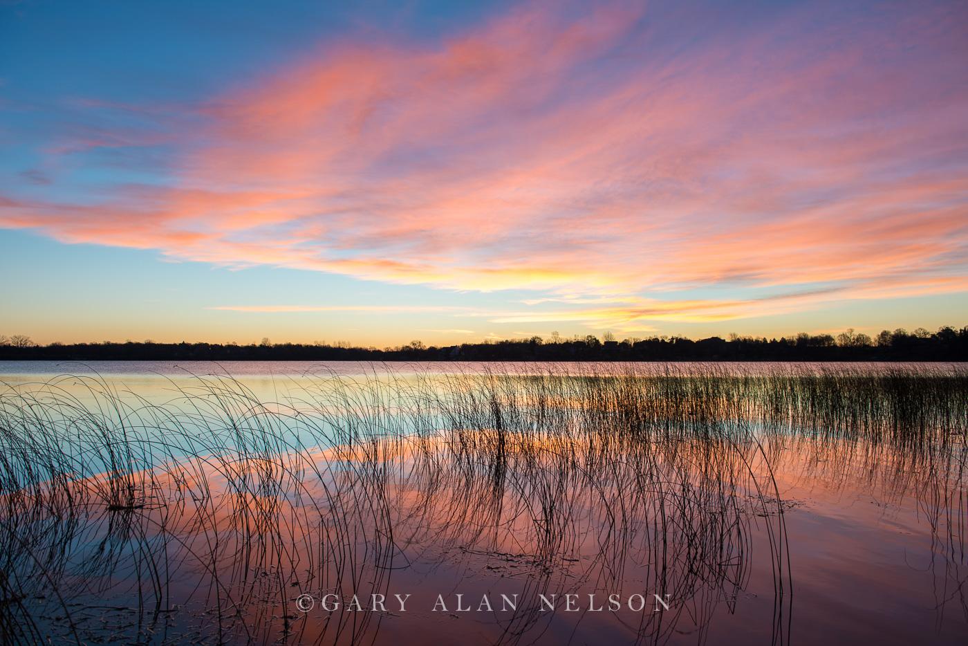 Sunrise,bulrushes,clouds,douglas county,lake,minnesota,reflections, photo