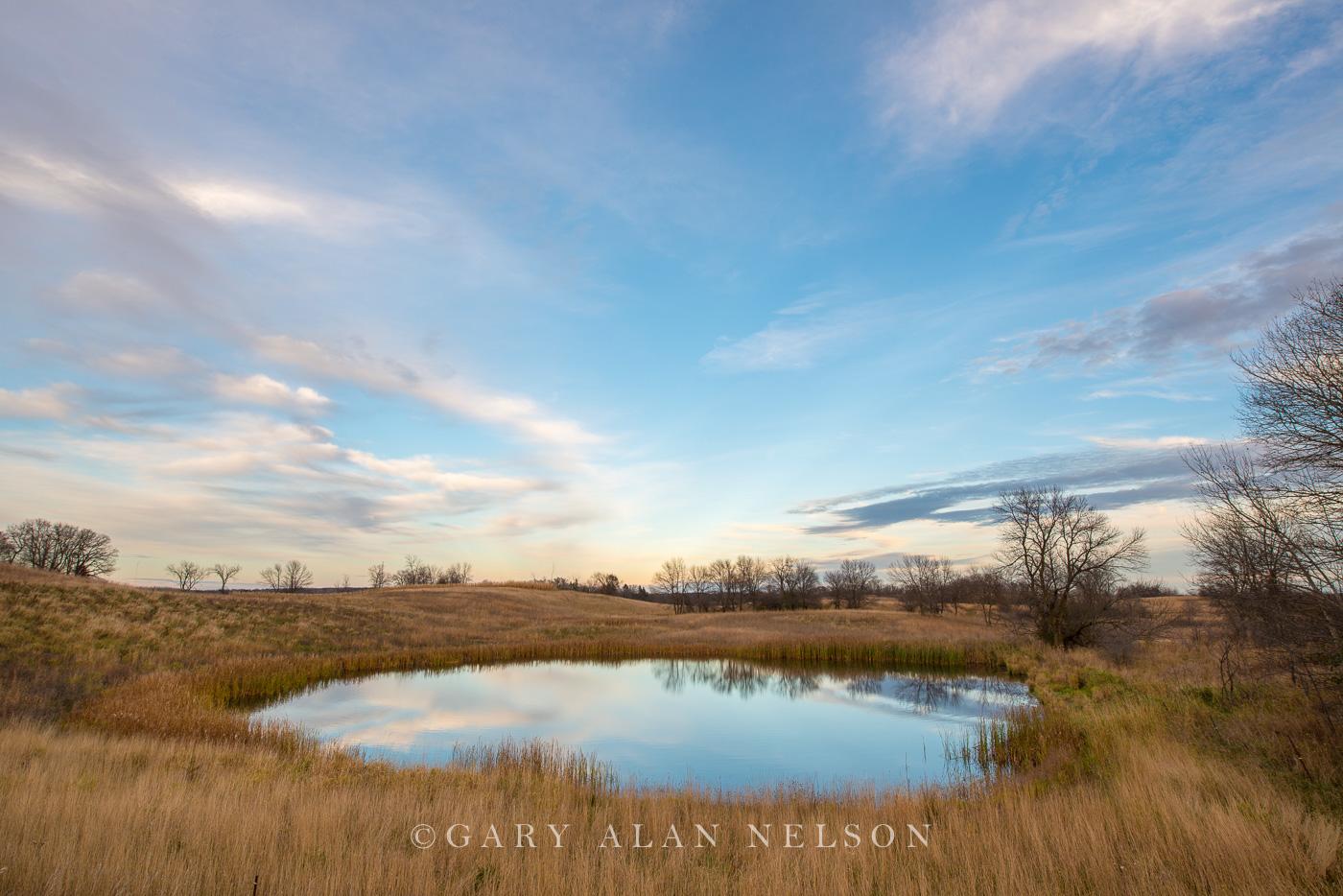douglas county,minnesota,prairie,prairie pothole,reflections,wetland, photo