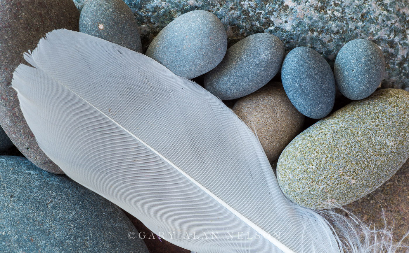 feather,lake superior,patterns,smooth,smooth stones,stones, photo