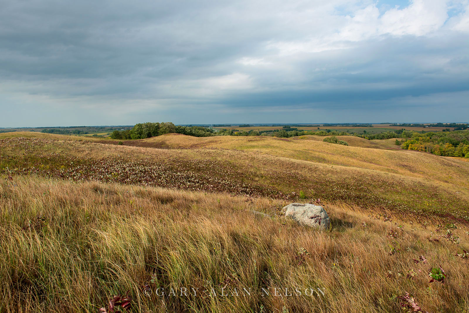 Rolling glacial moraine and glacial erratics on the prairie, Glacial Lakes State Park, Minnesota