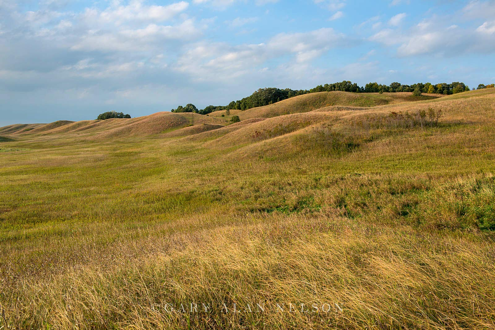 Rolling glacial moraine on the prairie, Glacial Lakes State Park, Minnesota