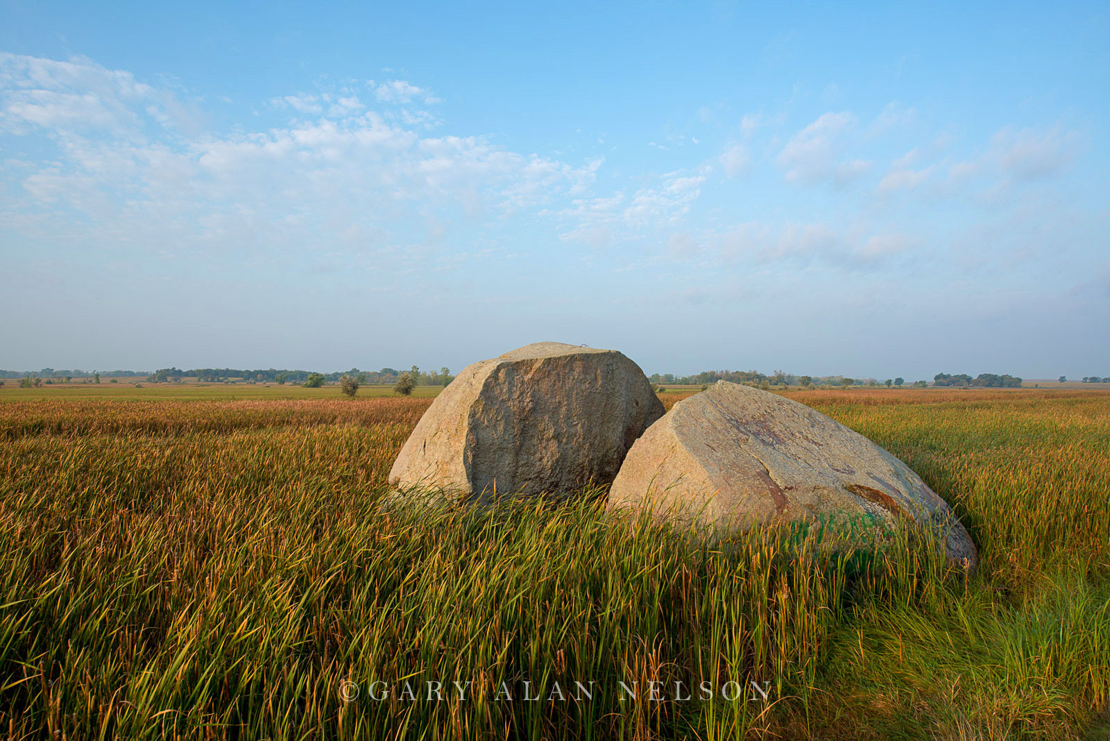 minnesota, prairie, moraine, glacial, prairie grasses, photo