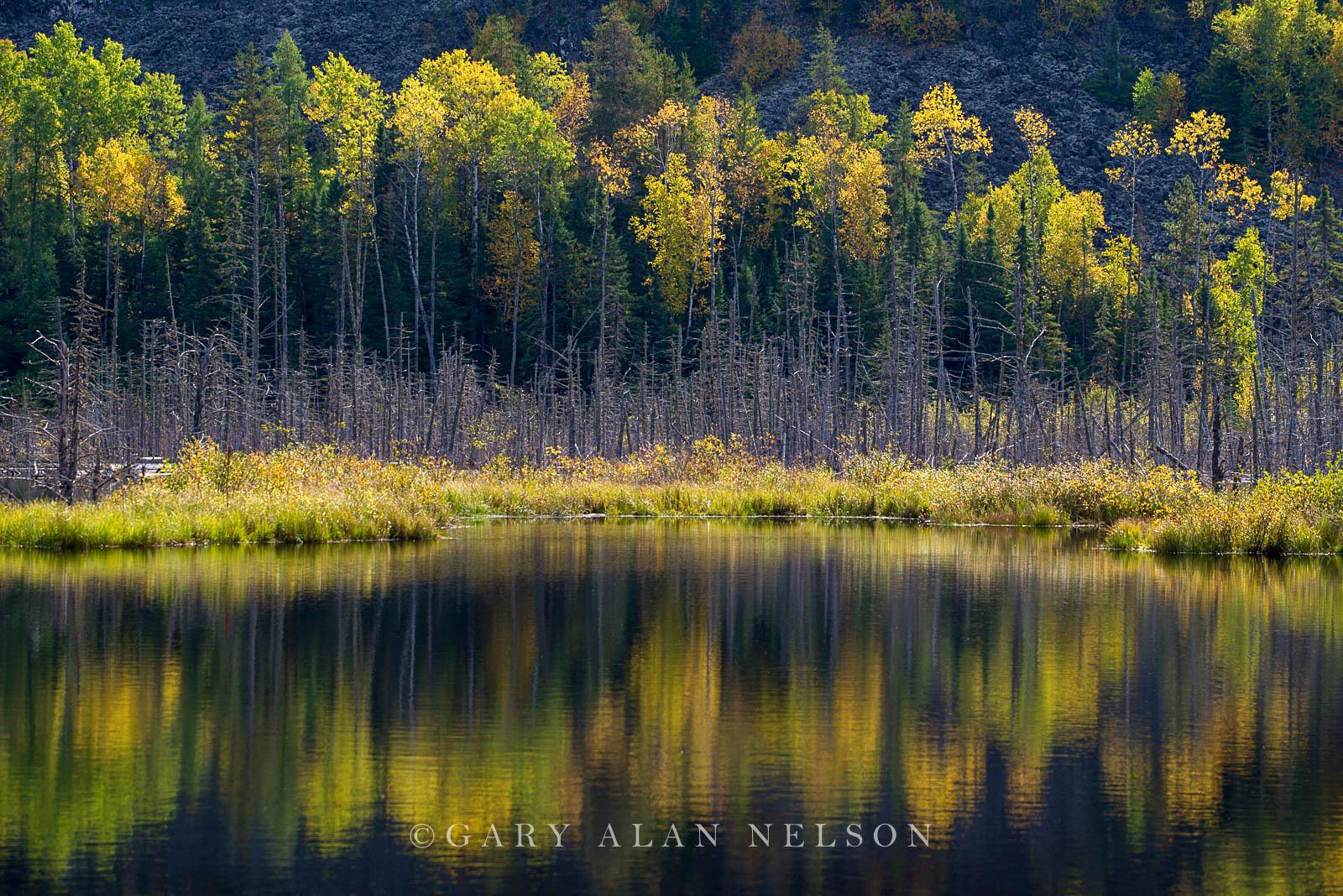lake superior, state park, minnesota, photo