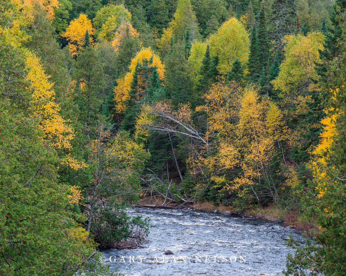 Cascade River in autumn, Cascade River State Park, Minnesota