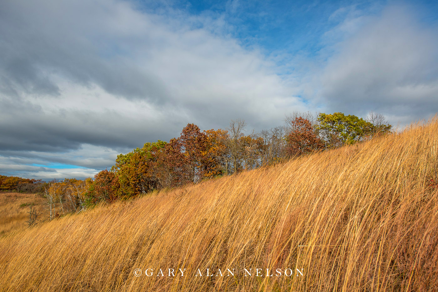 Goat prairie in the driftless area in autumn, Great River Bluffs State Park, Minnesota