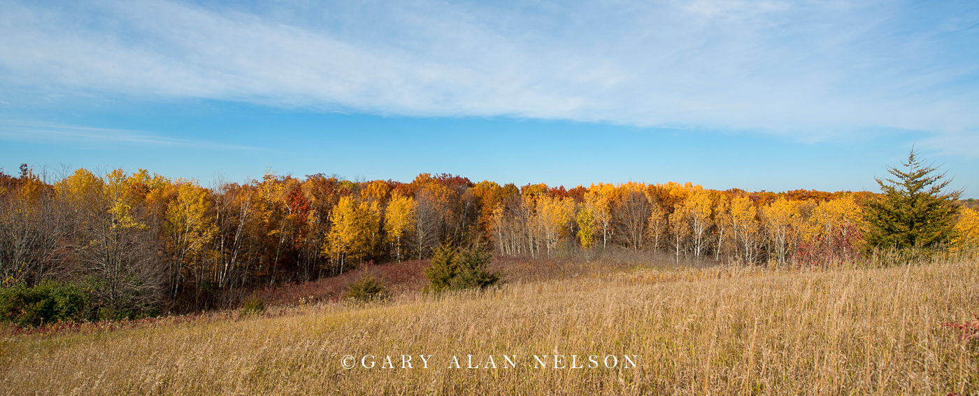 Prairie and woods in autumn at Lake Maria State Park, Minnesota.