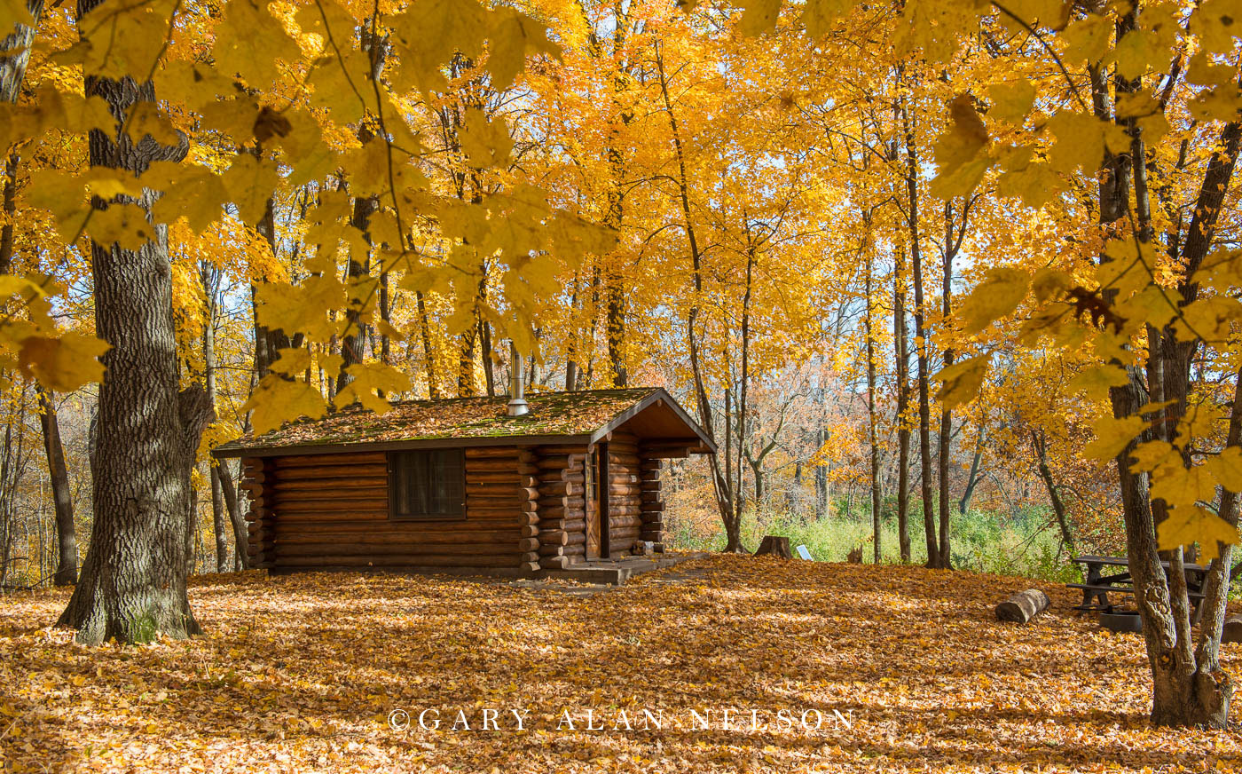 Log cabin in the thros of autumn, Lake Maria State Park, Minnesota