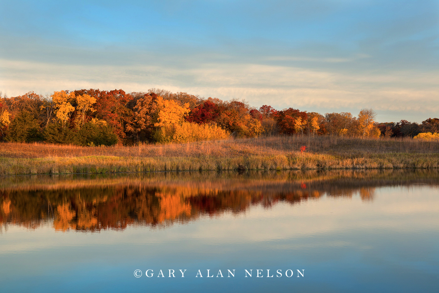 Prairie, woods and pond in autumn, Sibley State Park, Minnesota
