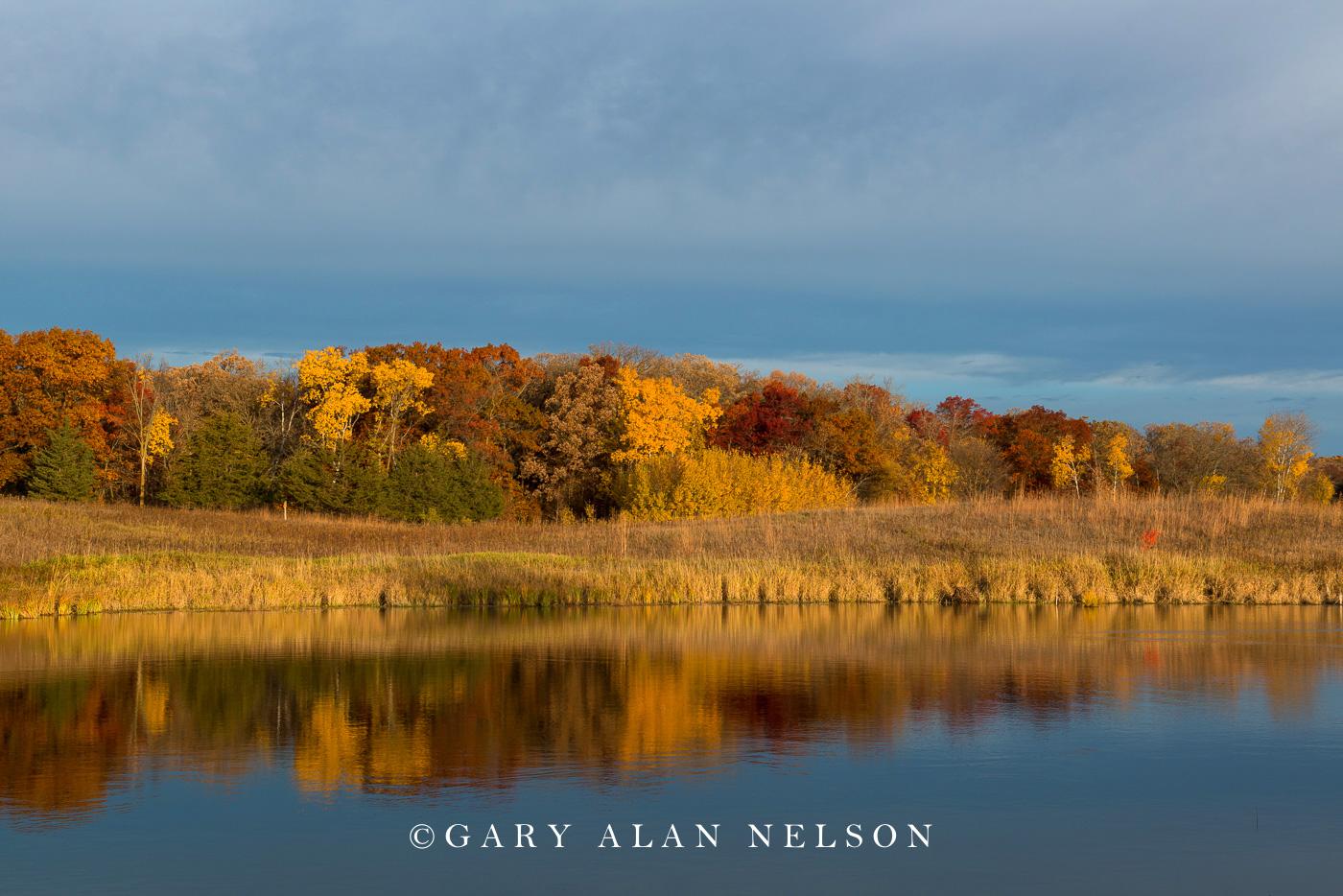 Sibley state park, autumn, minnesota, prairie grass, prairie., state park, photo